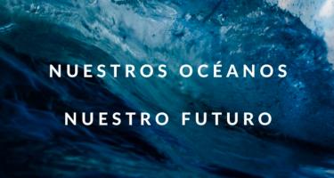 Declaración de OSC alerta sobre la pesca destructiva e ilegal de la flota china en América Latina