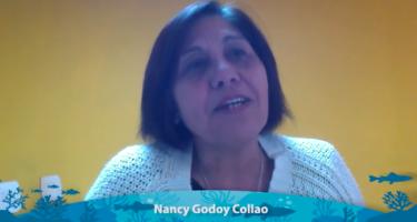 Guardianes del Mar: Pescadores Artesanales de Tocopilla difunden testimonio audiovisual denunciando afectación de proyecto de Codelco en ecosistemas marinos y comunidades tradicionales
